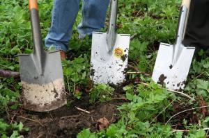 gardening-331986 640